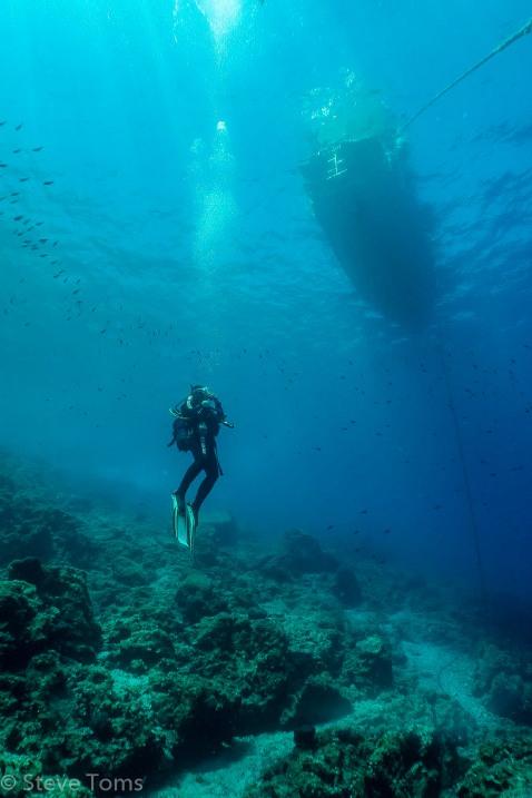 Dive 1-4